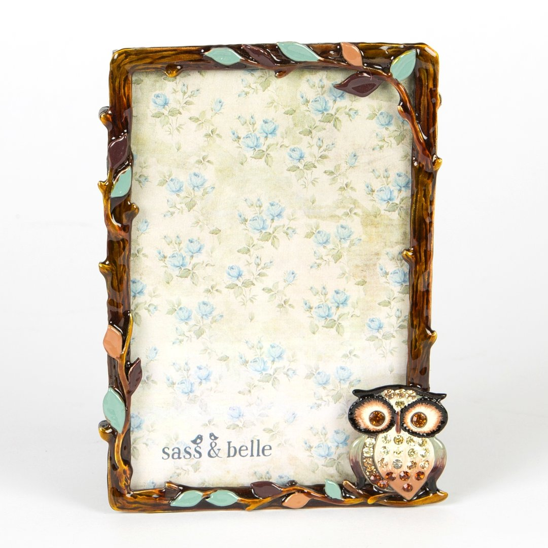 Owl design enamel and rhinestone frame
